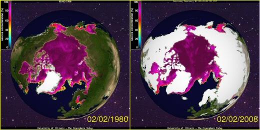 Arctic Ice Cover