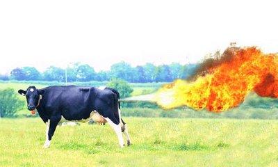 cow-methane.jpg?w=640