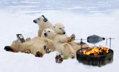 polar-bear-bbq.jpg