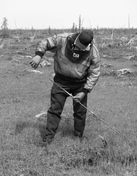 FIG. 3. Community-based monitoring provides many benefits to research, which include lowering the carbon footprint of a project by minimizing the travel of southern scientists to field sites. Here, Greg Lundie of Churchill, Manitoba, measures the active layer of permafrost at monitoring sites along the Hudson Bay coast.