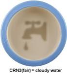 CRN3-bowl