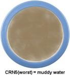 CRN5-bowl