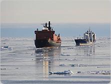 beluga_group_NE_passage