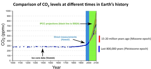 """CO2 report – estimated to be """"highest in 15 million years"""