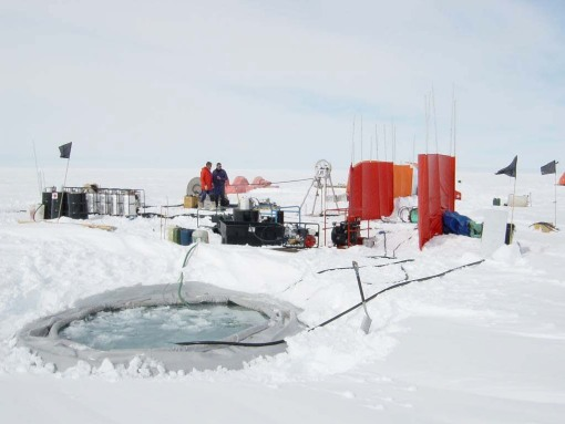 Antarctic sea water shows 'no sign' of warming