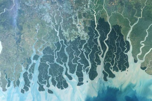 Bengal Island succumbs to global warming nonsense – AP gets nutty over the loss of a sandbar