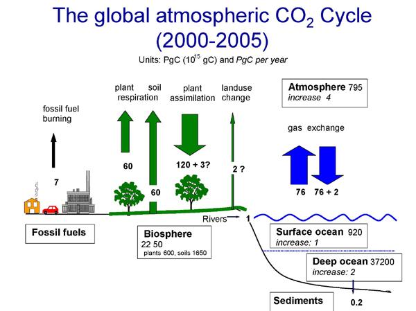[Image: carboncyclesketch2009.jpg?w=600&h=449]