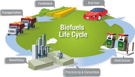 Biodiesel research paper