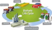 Biofeul life cycle Image: LLBL.gob