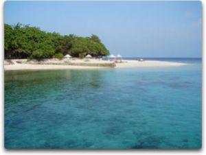 bg maldives