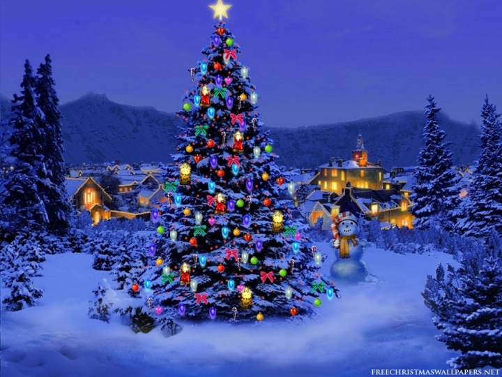 Christmas-Tree-Nature1024-226431[1]