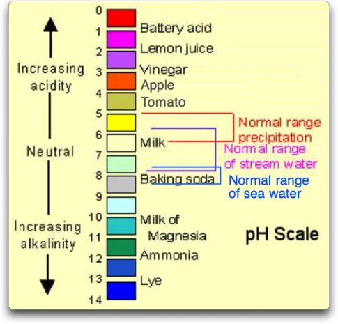 ph scale examples Coffee With Low Acid Acid Alkaline Food Chart
