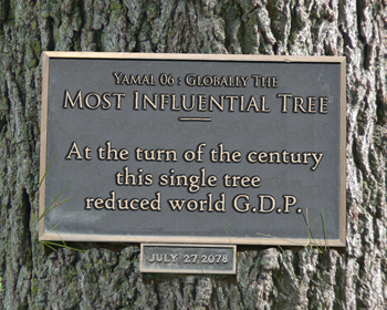 most-influential-tree-350[1]