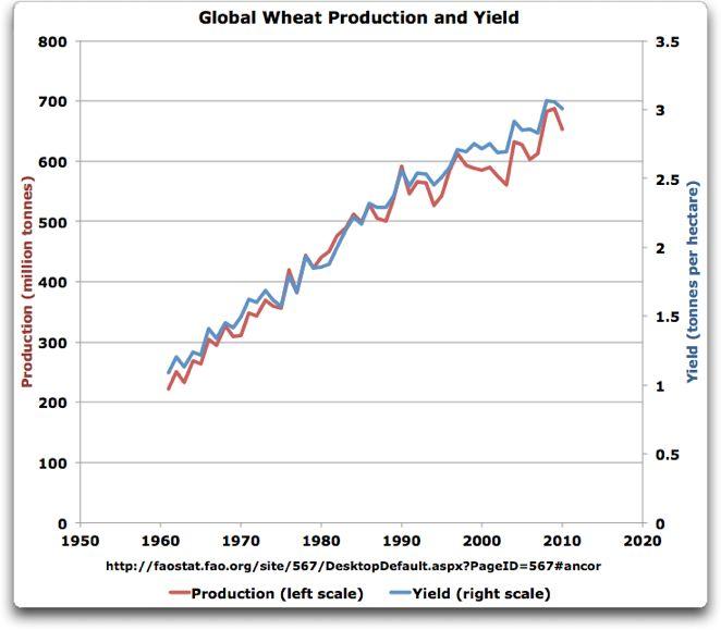 globalwheatproductionandyield[1]