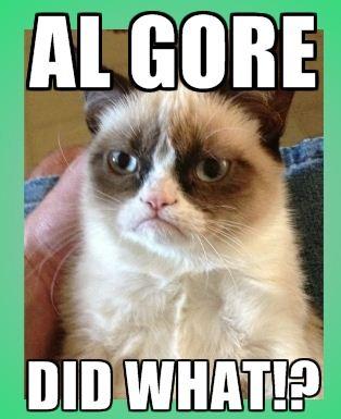 AlGore_grumpycat