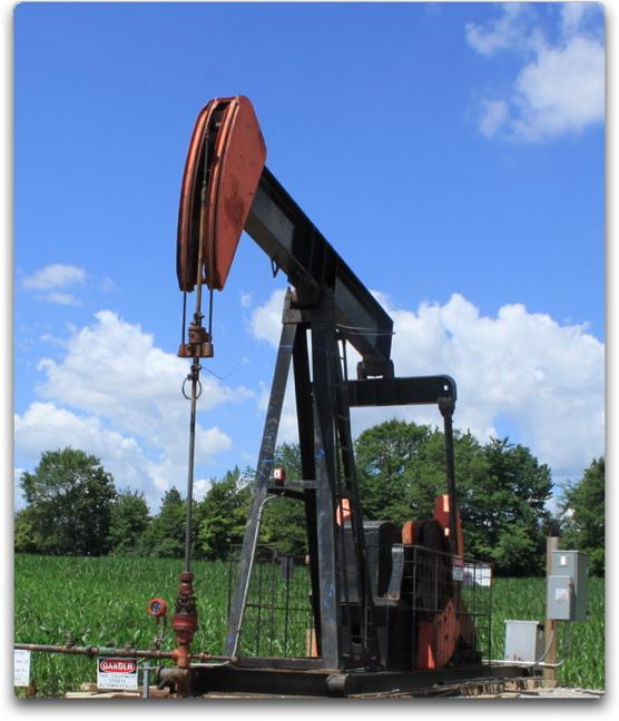 Oil from corn field