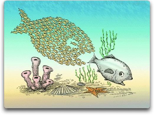 emergent school of fish