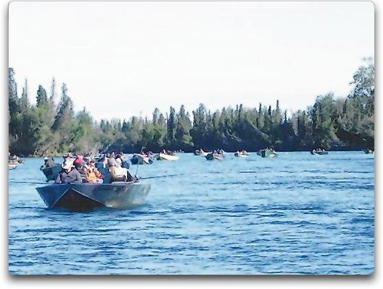 salmon fleet