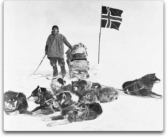 amundsen plus dogs