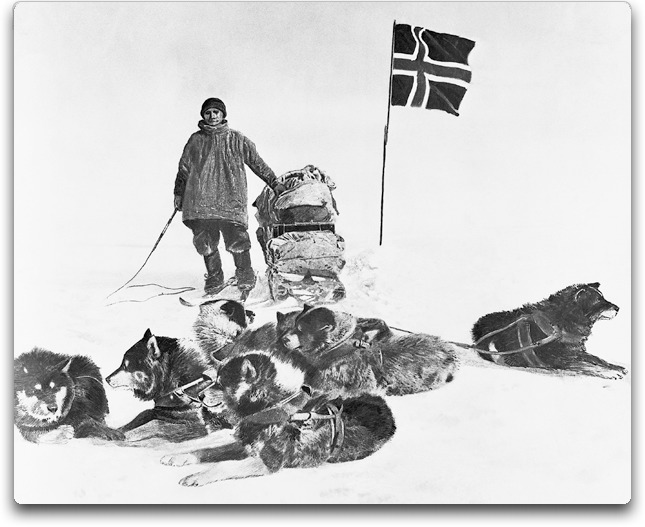 amundsen plus dogs