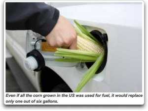 corn as food not fuel