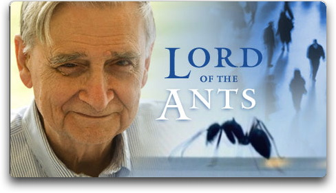 e o wilson lord of the ants