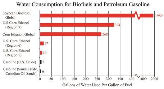 biodiesel fuel essay