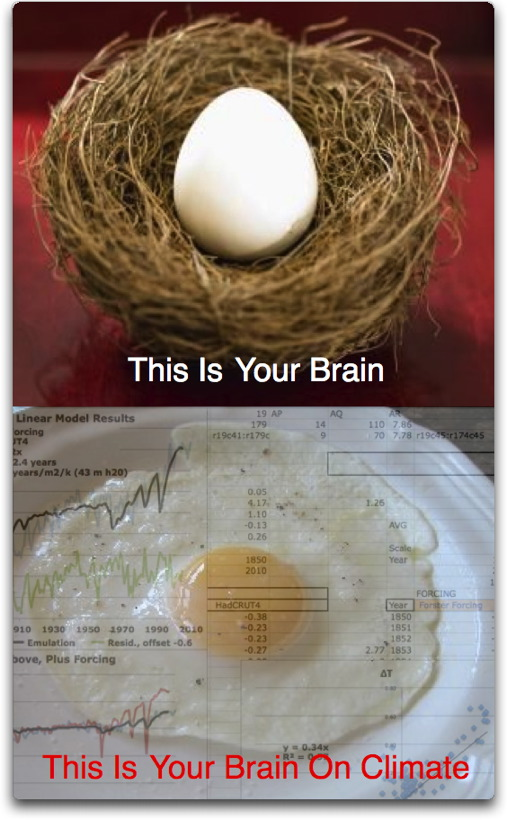 your brain on climate