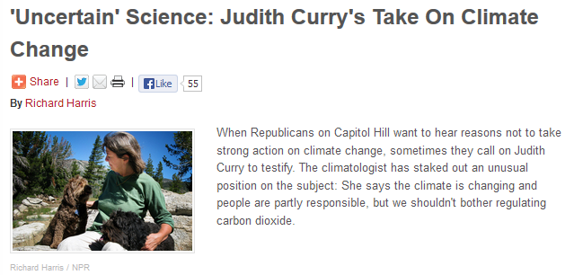 Curry-on-NPR