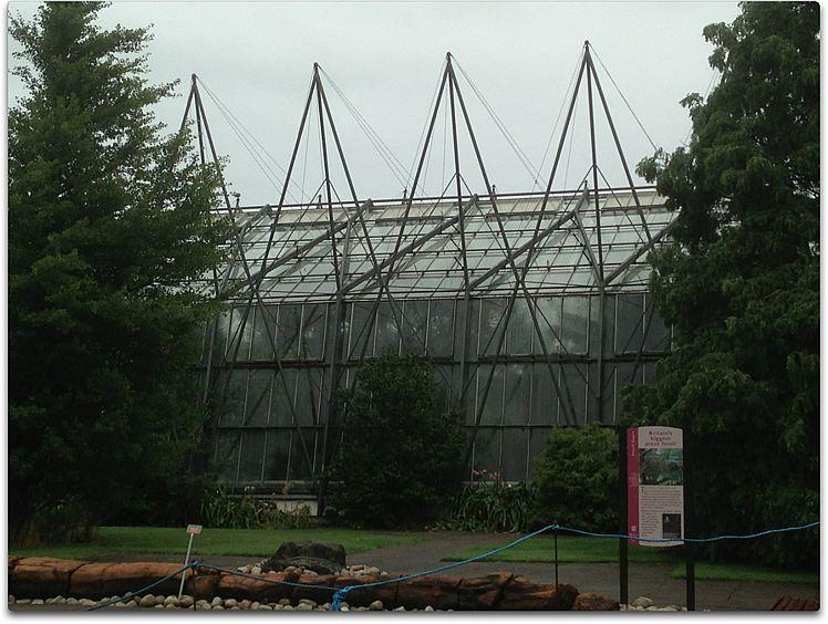 edinburgh new greenhouse