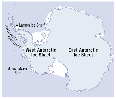 Image result for west antarctic ice sheet