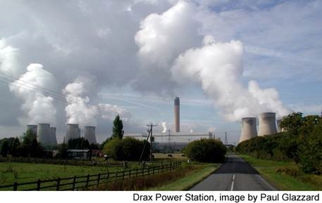 Wood-burning power plants: Misguided climate change solution
