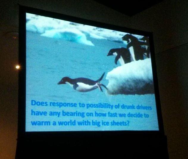 Alley_penguins