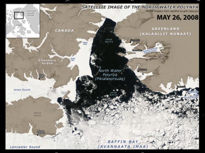 NWP-MODIS--2008_web