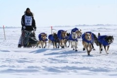 Rick Casillo dog racing