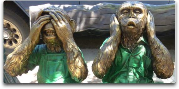 revkin monkeys