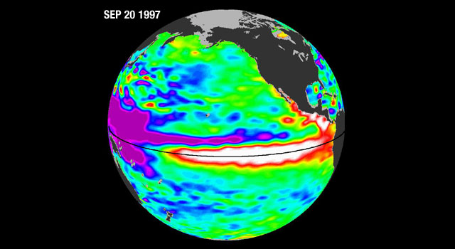 Pools of warm water known as Kelvin waves can be seen traveling eastward along the equator (black line) in this Sept. 17, 2009, image from the NASA/French Space Agency Ocean Surface Topography Mission/Jason-2 satellite. El Ninos form when trade winds in the equatorial western Pacific relax over a period of months, sending Kelvin waves eastward across the Pacific like a conveyor belt. Image credit: NASA/JPL Ocean Surface Topography Team