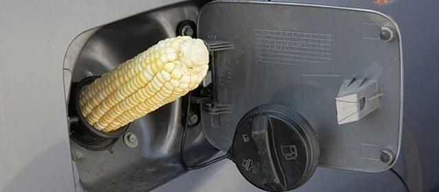 Corn+Gas+Tank[1]