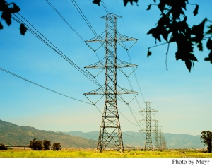 Powerlines, CA Article Caption