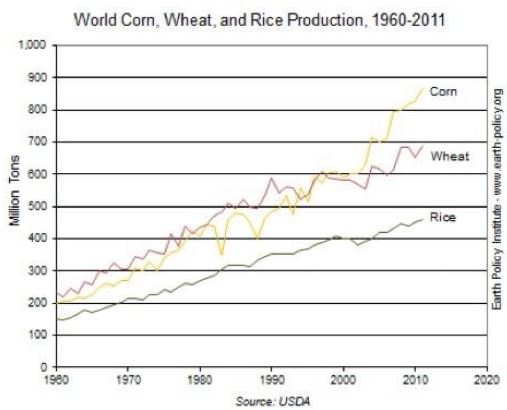 World-wheat-corn-rice_trends