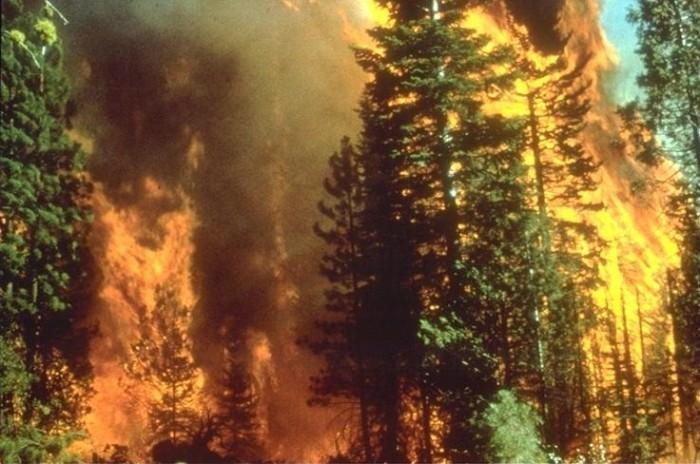 Wildfire_in_California[1]