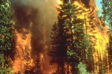 Wildfire_in_California[1]