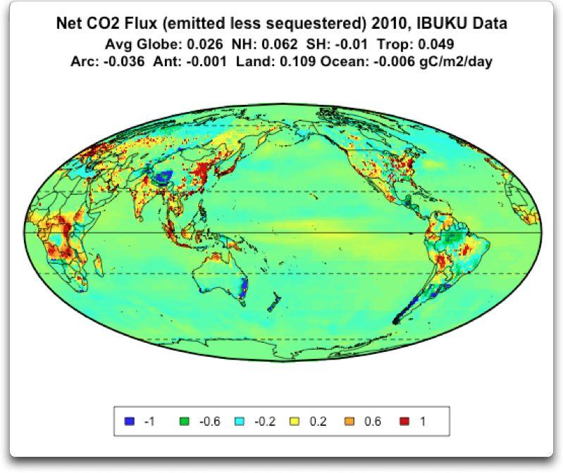 net co2 flux 2010 IBUKU data