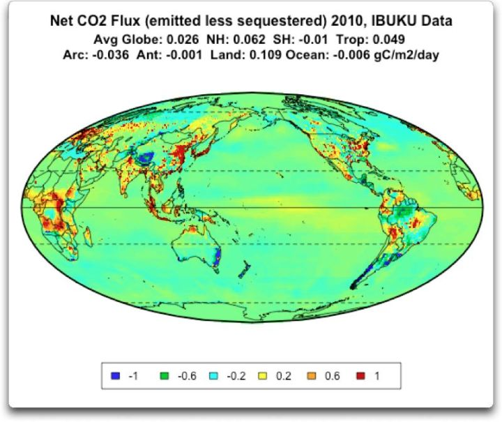 net co2 flux 2010 IBUKU data