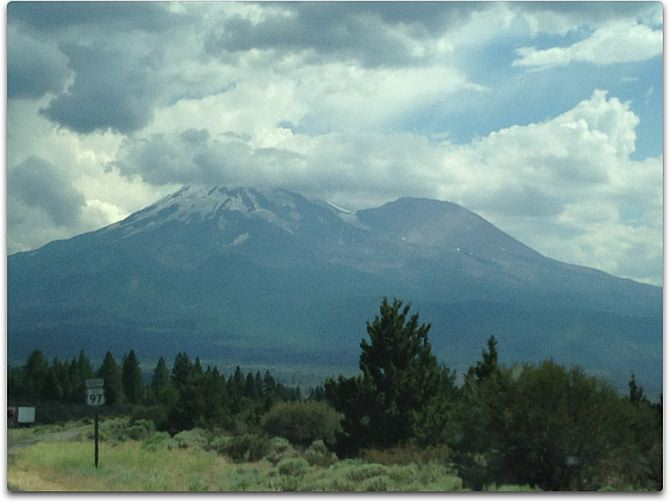 shasta northwest