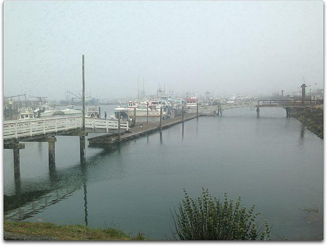 day six gray docks