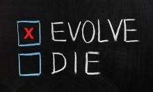 Evolve_or_die_checkbox