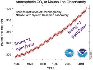 Atmospheric CO2 has risen at an accelerating rate. Source: http://www.esrl.noaa.gov/gmd/ccgg/trends/ - Downloaded Sep 2014. Annotations in purple by Ira.