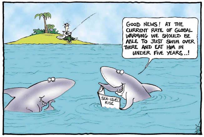 shark-global-warming