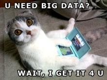 Big-Data-Kitty[1]